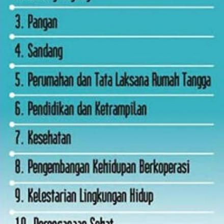 10 Program Pokok PKK